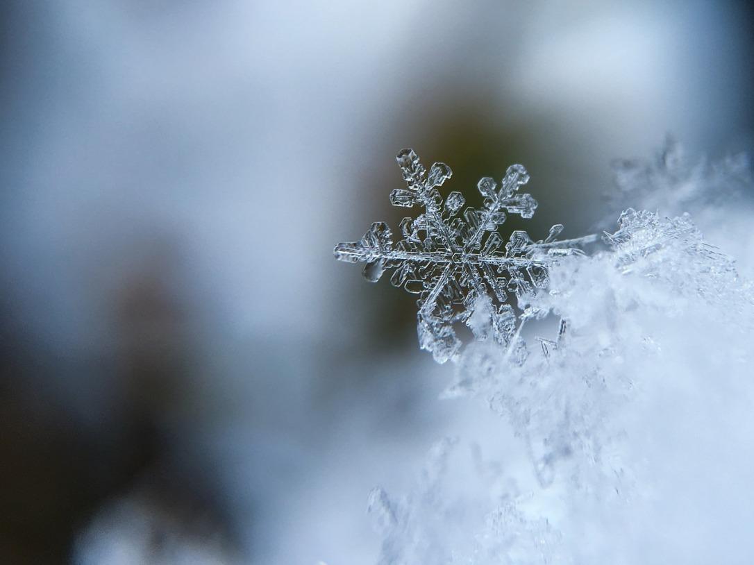 freddo_rigidità
